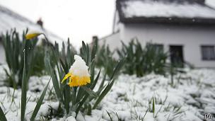 Narciso abatido por la nieve