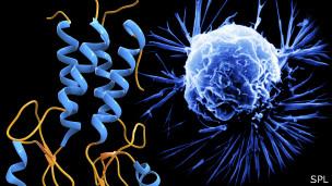 Modelo molecular de cáncer de mama