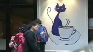 Café de Gatos