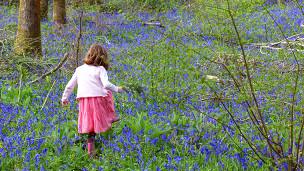 Nena en un bosque
