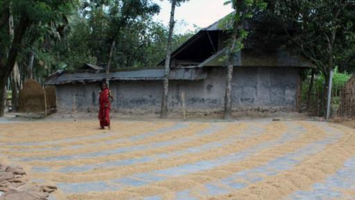 Vilarejo de Kalai  | Sophie Cousins - BBC