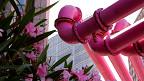 Рожеві труби Берліна