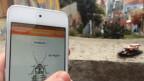 Software controla baratas equipadas com 'mochila eletrônica' (foto: Backyard Brains)