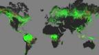 Mapa global do desmatamento. Foto: Universidade de Maryland