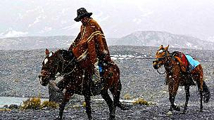 Guía local regresando a caballo del glaciar Pastoruri