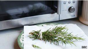 Hierbas y horno microondas