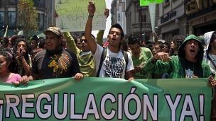 Legalización de la marihuana Foto Getty Images.