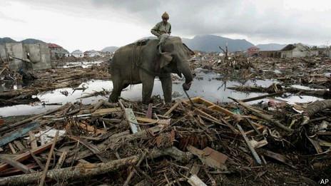 Devastación tras tsunami de 2004