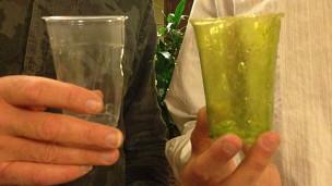 Vaso de shrilk