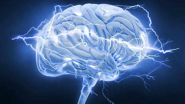 इंसानी दिमाग