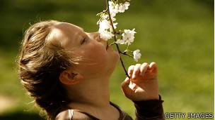 Niña oliendo una flor