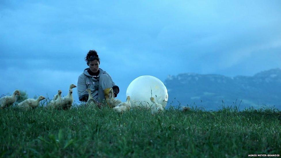 """Фотография """"Лунной гусиной моделирующей системы: установки по лунной миграции птиц"""" Агнес Майер-Брандис"""