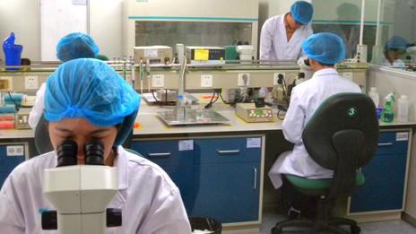 Laboratorio del centro de clonación de BGI en China