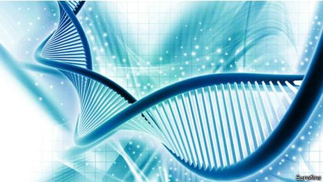 cadena del ADN