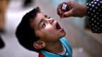 Pakistán: atacan convoy de vacunación contra la polio