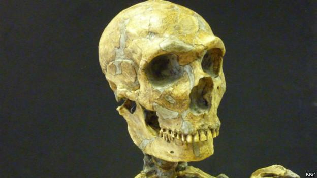 Esqueleto de homem neandertal | Foto: BBC