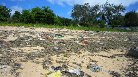 Playa de Kiribati