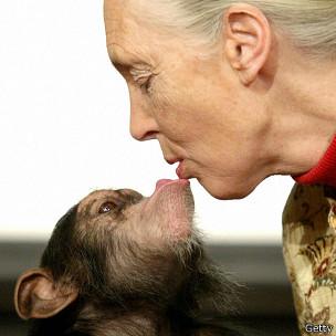Jane Goodall con mono