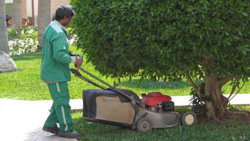 Саудовский садовник