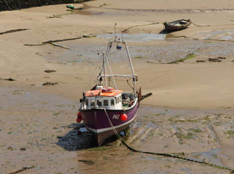 A fishing boat sits in mud at low tide