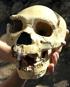 Cráneo de Homo heidelbergensis de 400.000 años