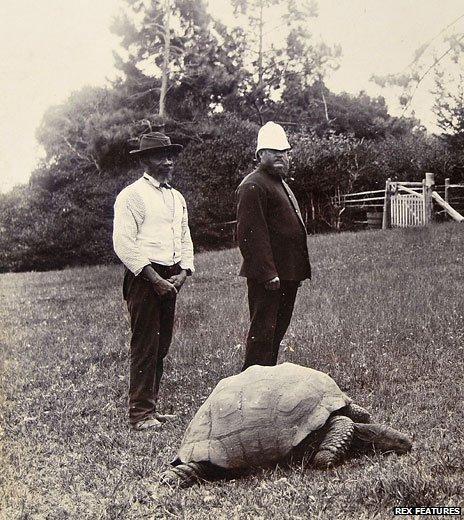 Jonathan en 1900