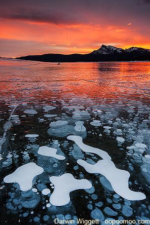 Ice bubbles - ©Darwin Wiggett  - oopoomoo.com