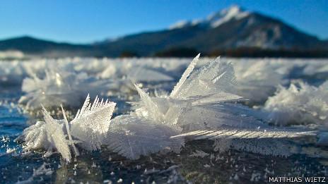 Flores de hielo de cerca / Foto Matthias Wietz
