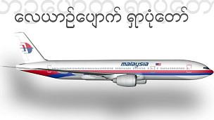 هواپیمای خطوط مالزی