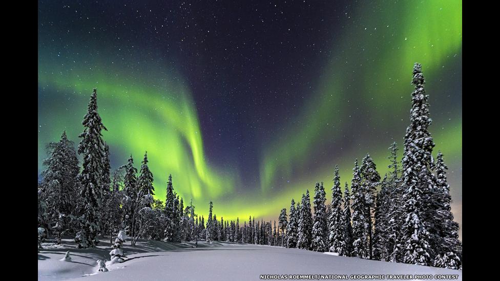 """""""Лесное сияние"""". Снимок Николаса Римельта/National Geographic Traveller"""