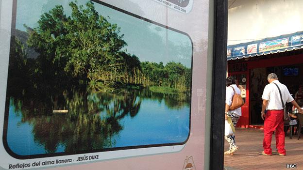 Una foto de las sabanas innundables de Casanare en una calle la cabecera departamental, Yopal.