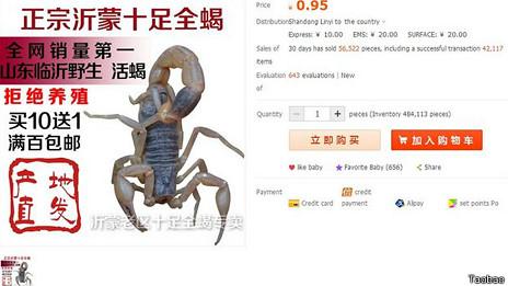 Página en la que se ofrecen escorpiones