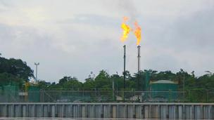 Producción petrolera en la Amazonía
