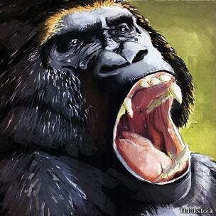 Gorila furioso
