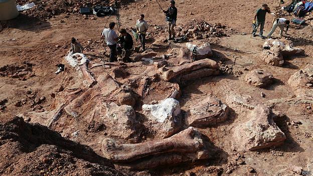 Paleontólogos argentinos aseguran haber descubierto el dinosaurio más grande del mundo 140517015256_sp_dinosaurio_624x351_bbc