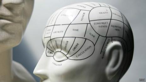 Cerebro modelo