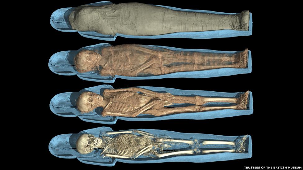 Deshaciéndose de las capas superficiales los investigadores fueron capaces de llegar a ver los esqueletos con un detalle que nunca antes se había alcanzado.