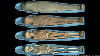 Сканирование раскрывает тайны мумий