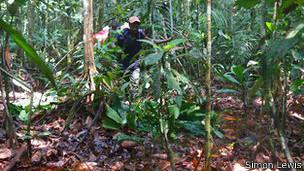Turbera en el Congo
