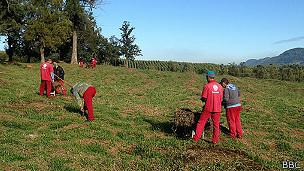 Trabajadores de cementerio