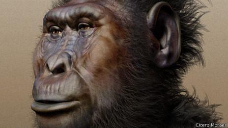 Reconstrucción del rostro de un Paranthropus boisei