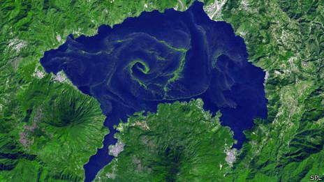 Algas en el lago Atitlán en Guatemala