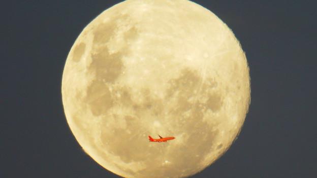 Luna llena de junio en Autralia