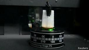 escáner de un insecto