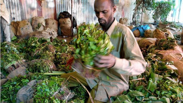 Comerciante somalí de khat en Kenia (foto de archivo)