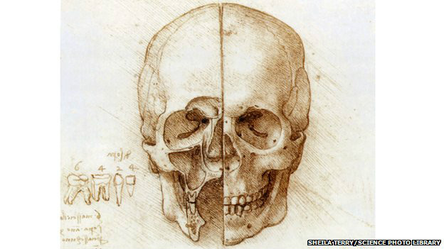 Dibujo de Leonardo da Vinci