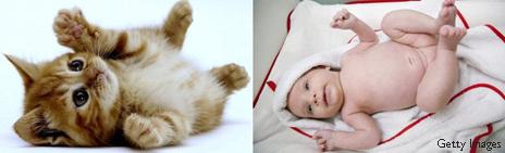 Gatito y bebé