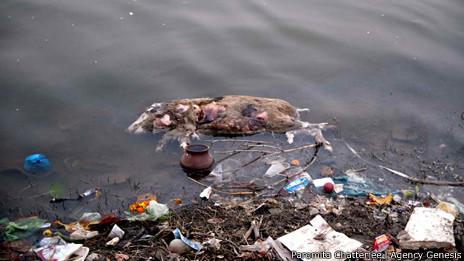 Orilla del río Ganges