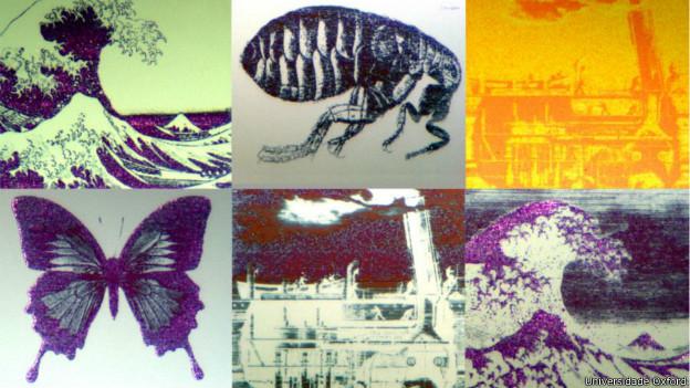 Imagens microscópicas (Universidade Oxford)