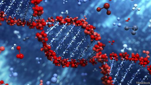 Genoma (Thinkstock)